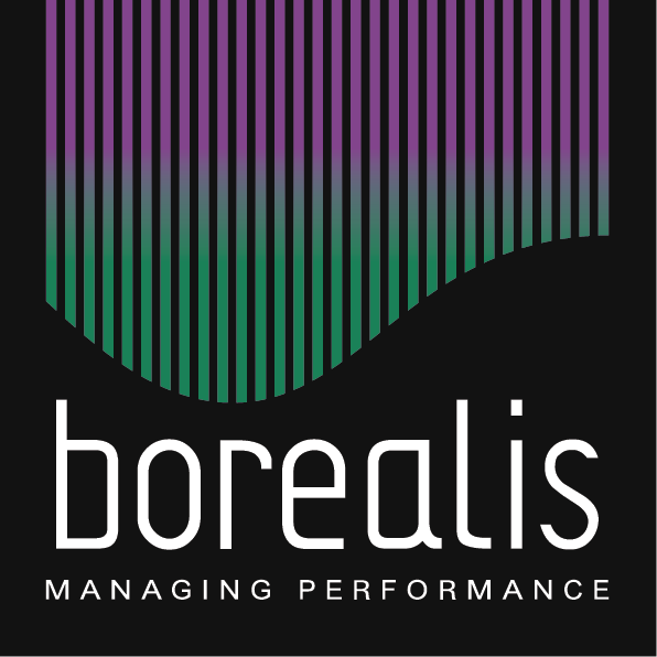 Borealis Consulting | Consultancy & HR Tech Solutions